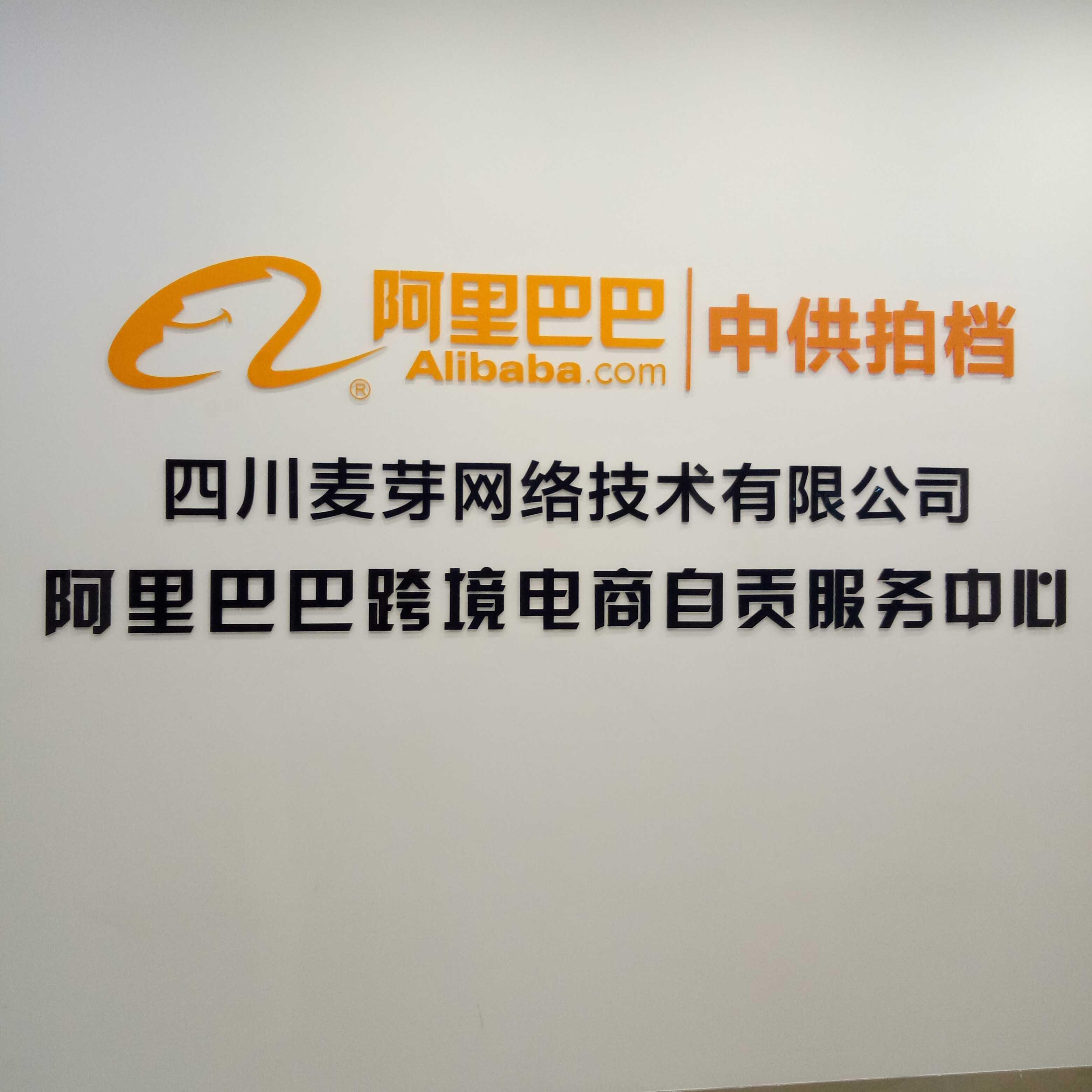 四川麦芽网络技术有限公司